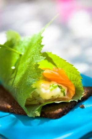 03152 salmon con pepino y queso