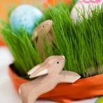 Decorando huevos de Pascua