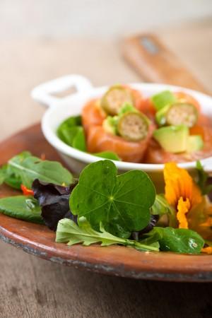03302 Salmon marinado con ensalada-1