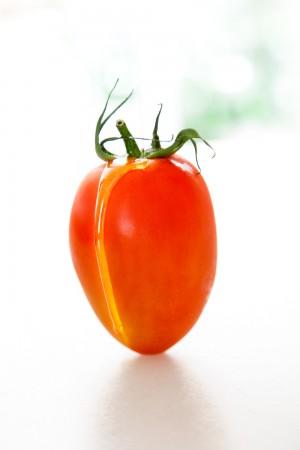 10559 tomate pera
